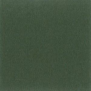 BR Olive Green