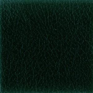 IL Dark Green